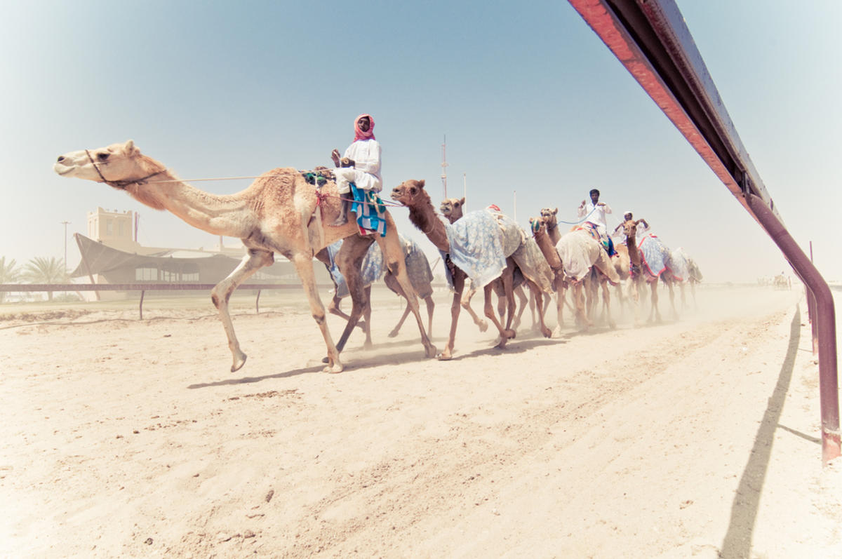Photo of Top 10 Historical Places In Qatar