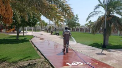 Photo of Ministry of Municipality and Environment: All Public Parks To Reopen From 1st July 2020