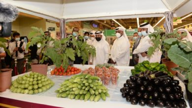 Photo of MME Launches Festival of Qatari Farm Products Participated by 150 Farms