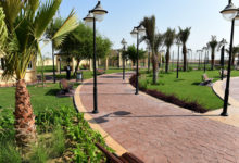 Photo of Two New Public Parks Are Now Open in Qatar