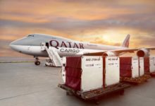 Photo of Qatar Airways Cargo To Fly Endangered Animals To Their Habitats Free