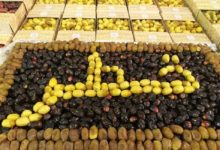 Photo of Dates Festival begins at Souq Waqif today
